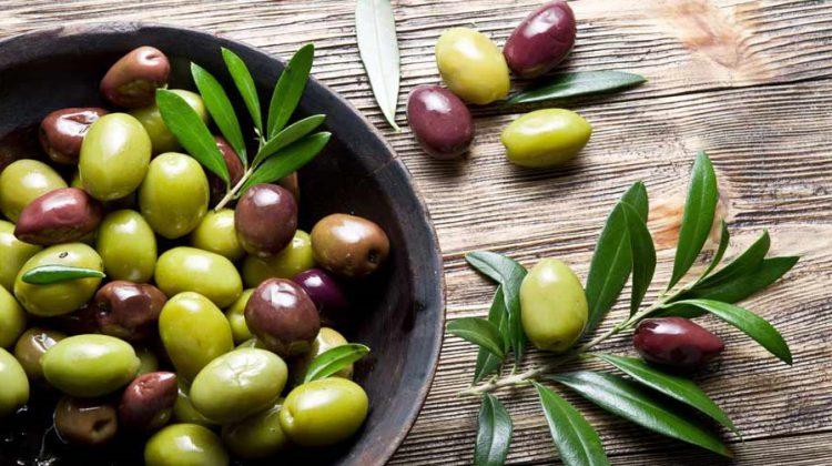 variedades de aceitunas para el mejor aceite