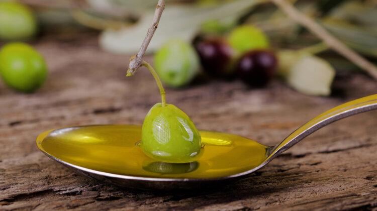 Que aceite de oliva comprar