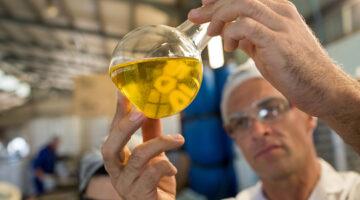Aceite de oliva premiado